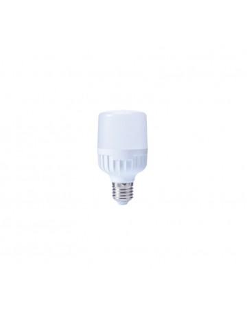 CT-4329 13W LED AMPUL
